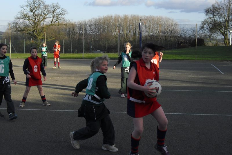 Netball and Bird Watching 002